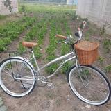 Bicicleta Retro Vintage Clasica Cromada Equipada