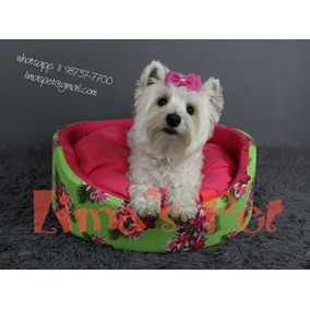 Filhotes De West Highland White Terrier