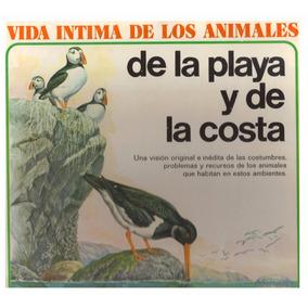 Libro Vida De Los Animales De La Playa Y De La Costa