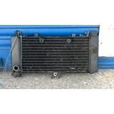 Radiador De Agua Honda Vt 250