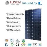 Panel Solar Policristalino 260 W 24v O 12 V 8.5a