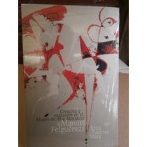 Creacion Expresion En Museo Arte Abstracto Manuel Felguerez