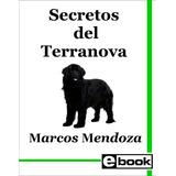 Terranova Libro Adiestramiento Cachorro Adulto Crianza