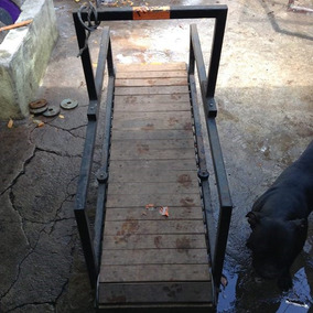 Caminadora O Treadmill Para Perro