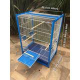 Viveiro Calopsita Agapornis Periquitos Aves Mansas Azul