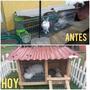 Casas Jaula De Conejo,cuy .80cm Largo X .50 Ancho X .50 Alto
