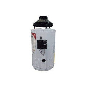 Boiler Calentador De Paso Ar6 Guardian 6 Litros Gas Lp