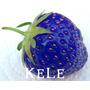 Semilla Frutilla Frutillas Azul Frutas Raras 20 Semillas