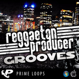 Reggaeton Producer Grooves Loop Samples