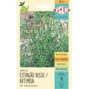 160 Sementes De Estragão Russo Artemísia Tempero