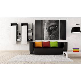Caballo Triptico En Canvas De 140x90 Cm Muestras S/cargo