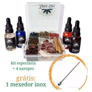 Kit Gin 9 Especiarias + 4 Xaropes Grátis 1 Mexedor Envio 24h