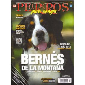 Revista Perros Bernés De La Montaña Marzo 2013 Envio Gratis