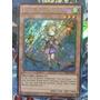 Yugioh! Ritual Beast Tamer Wen -thsf-en024 - Secret Rare 1st