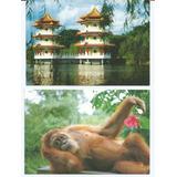2 Postais Antigos Anos 80 - Singapura - Fotos Do Produto.
