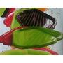 50 Bandeja Plastica 4 Colores Panaderias Comercios