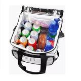 Bolsa Térmica Ice Cooler Mor 24 Litros Praia Viagem