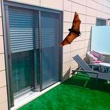 Mosquiteros Para Murcielagos / Australianos Imperdibles !!!