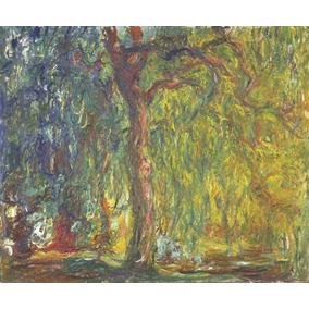 Lienzo Tela Claude Monet Sauce Llorón 70x84cm