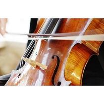 Luthier Encerdado Arcos Violín Viola Violoncello Contrabajo