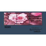 Cuadro Triptico Small Flores Rosa 90x30cm