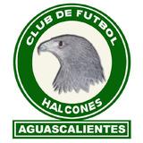 Jersey Halcones Aguascalientes Jima (buscoparacocmprarla)