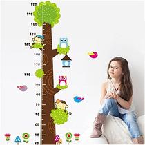Tabla De Medición De La Altura Del Crecimiento Del Árbol De
