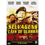Selvagens Cães De Guerra - Dvd - Richard Burton  Roger Moore