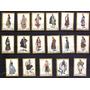 Grecia 1973 Trajes Tradicionales Populares Yv 1108-24 Mint