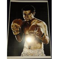 Poster Firmado Marco Antonio Barrera Box Boxeo Autografo