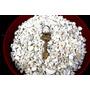 Piedras Decorativas - Blancas - 2 Kilos - Jardin Urbano Shop