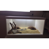 Terrarios Geckos Erizos Hamster Serpientes! Super Esteticos!