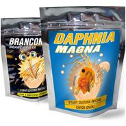 2x- Artemia - 2x- Daphnia Magna - Cultura Ovos P/ Eclodir