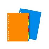 Separadores De Colores Tamaño Carta 5 Divisiones