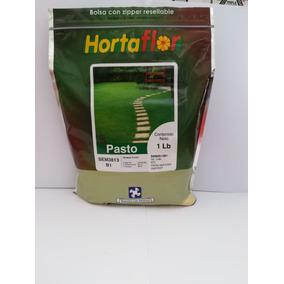 Semillas De Pasto 1lb (454g) Variedad Sombra