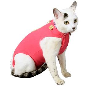 Roupa Cirúrgica Pet Med Para Gatos Rosa - Tamanho 2