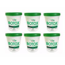 6 Botox Capilar Oleo De Coco Teryne Original Atacado