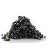 Sturgeon Caviar, 0.5 Lb/ 226 G
