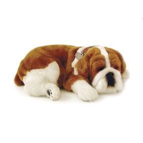 Perfect Petzzz Filhote Cachorro Bulldog Imex Unidade