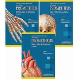 Prometheus Todos Los Tomos Anatomia Humana Pdf