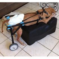 Cadeira De Rodas Para Cães - Grande Melhor Custo Benefício
