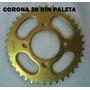 Corona 38t Rin De Paleta Para Bera Jaguar Horse