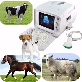 Veterinaria Veterinaria Vet Máquina De Escáner Ultrasonido