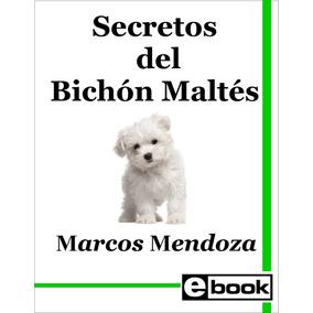 Bichon Maltes Libro Entrenamiento Cachorro Adulto Crianza