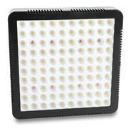 Painel Led Quantum Board 600w 3500k Deep Red