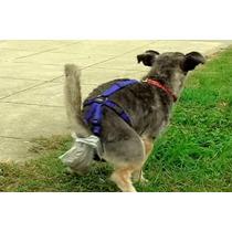 Saquinho Acessório P/ Fezes Para Cães Cachorros Ofpet Tam 2