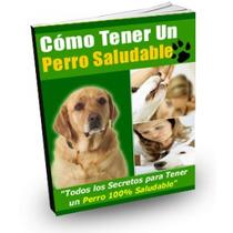 Cómo Tener Un Perro Saludable Pdf Envio Gratis