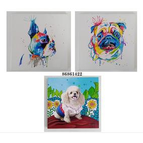 Pinturas De Sus Mascotas!