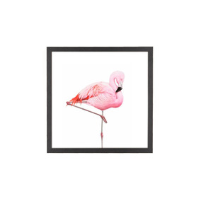 flamingo passaro casa móveis e decoração no mercado livre brasil