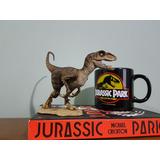 Velociraptor Rebor Winston(jurassic Park) Dinossauro.